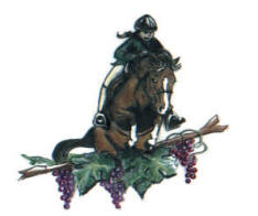 Horseback Riding in Placerville Logo